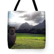 Beautiful Hawaii Tote Bag