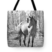 Beautiful Horse In Black And White Tote Bag
