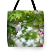 Beautiful Hummingbird Tote Bag