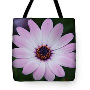 Beautiful In Pink Today Tote Bag