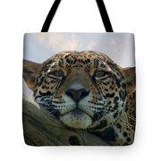Beautiful Jaguar Tote Bag
