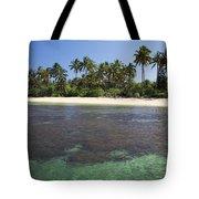 Beautiful Lanai Beach Tote Bag