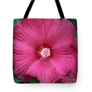 Beautiful Large Hibiscus Tote Bag