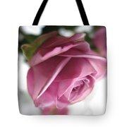 Beautiful Lavender Rose 2 Tote Bag