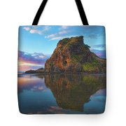 Beautiful Lion Tote Bag