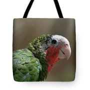 Beautiful Look At At The Profile Of A Conure Parrot Tote Bag