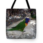 Beautiful Lorikeets Tote Bag