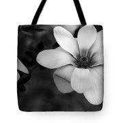 Beautiful Magnolia Tote Bag