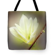 Beautiful Magnolia Original Painting 01 By H G Mielke Tote Bag