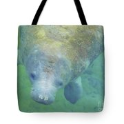 Beautiful Manatee Tote Bag