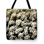Beautiful Marine Plants 4 Tote Bag