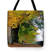 Beautiful Morning Walk In Autumn Tote Bag