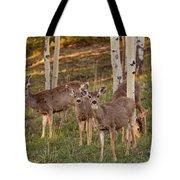 Beautiful Mule Deer Herd Tote Bag