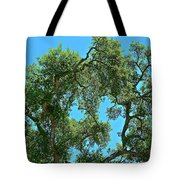 Beautiful Oak Tote Bag