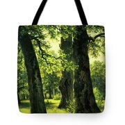 Beautiful Oak Trees Reach To The Skies Tote Bag