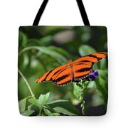 Beautiful Orange Oak Tiger Butterfly In Nature Tote Bag