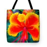 Beautiful Peacock Flower 3 Tote Bag