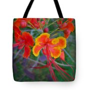Beautiful Peacock Flower 5 Tote Bag