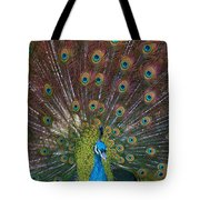 Beautiful Peacock Tote Bag