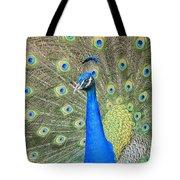 Beautiful Peacock Walking Around Tote Bag
