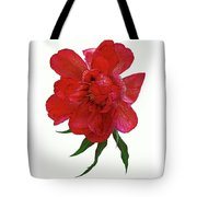 Beautiful Peony Flower. Tote Bag