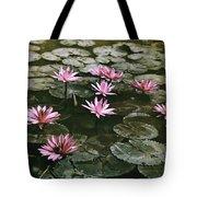 Beautiful Pink Lotus Water Lilies Bloom Tote Bag