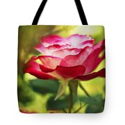 Beautiful Pink Rose Blooming In Garden Tote Bag