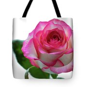 Beautiful Pink Rose With Leaves On A Wite Background. Tote Bag