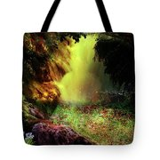 Beautiful Place Tote Bag