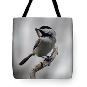 Beautiful Pose - Black-capped Chickadee Tote Bag