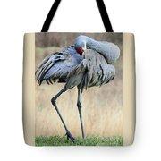 Beautiful Preening Sandhill Crane Tote Bag
