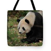 Beautiful Profile Of A Giant Panda Bear Ambling Along Tote Bag