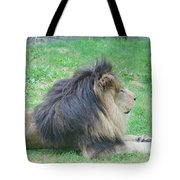Beautiful Profile Of A Resting Lion In Green Grass Tote Bag