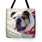 Beautiful Pug. Tote Bag