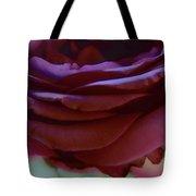 Beautiful Purple Rose Macro 2 Tote Bag