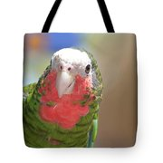 Beautiful Red Feathers On The Throat Of A Green Conure Bird Tote Bag