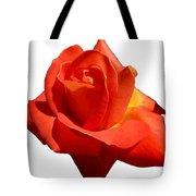 Beautiful Red Rose Photograph Vector Tote Bag