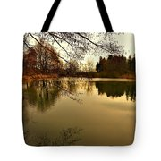 Beautiful Reflection In The Evening Hours Tote Bag