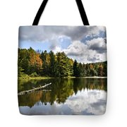 Beautiful Reflections Landscape Tote Bag