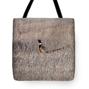 Beautiful Rooster Pheasant  Tote Bag