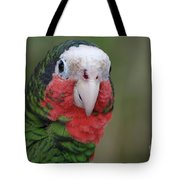 Beautiful Ruffled Green Feathers On A Conure Tote Bag