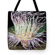 Beautiful Sea Anemone 1 Tote Bag