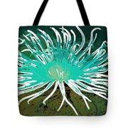 Beautiful Sea Anemone 2 Tote Bag