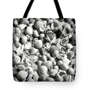 Beautiful Seashells Black And White Tote Bag