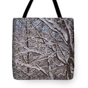Beautiful Snow Tote Bag