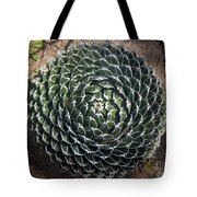 Beautiful Spiked Ball Plant Tote Bag