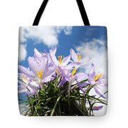 Beautiful Spring Flower Blossom In Sky Background Tote Bag