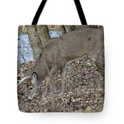 Beautiful Stag Tote Bag
