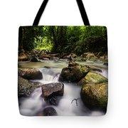 Beautiful Stream In Western Ghats Region Of Karnataka India Tote Bag