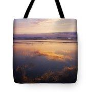 Beautiful Sunset Along Oregon Coast Tote Bag